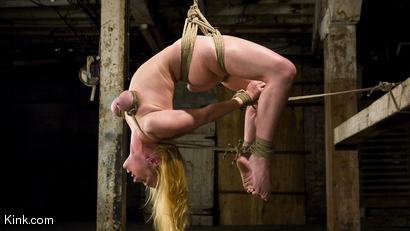Photo number 2 from Dee Williams Suffers Though Beautiful Pure Bondage at it's Best shot for Hogtied on Kink.com. Featuring Dee Williams in hardcore BDSM & Fetish porn.