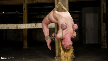 Photo number 4 from Dee Williams Suffers Though Beautiful Pure Bondage at it's Best shot for Hogtied on Kink.com. Featuring Dee Williams in hardcore BDSM & Fetish porn.