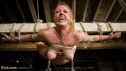 Photo number 6 from Dee Williams Suffers Though Beautiful Pure Bondage at it's Best shot for Hogtied on Kink.com. Featuring Dee Williams in hardcore BDSM & Fetish porn.