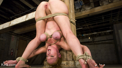 Photo number 8 from Dee Williams Suffers Though Beautiful Pure Bondage at it's Best shot for Hogtied on Kink.com. Featuring Dee Williams in hardcore BDSM & Fetish porn.