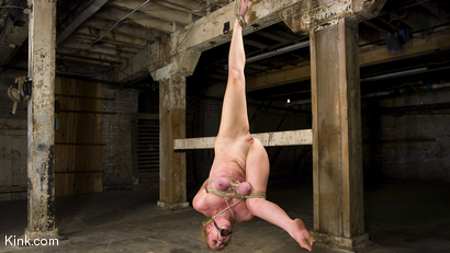 Photo number 11 from Dee Williams Suffers Though Beautiful Pure Bondage at it's Best shot for Hogtied on Kink.com. Featuring Dee Williams in hardcore BDSM & Fetish porn.