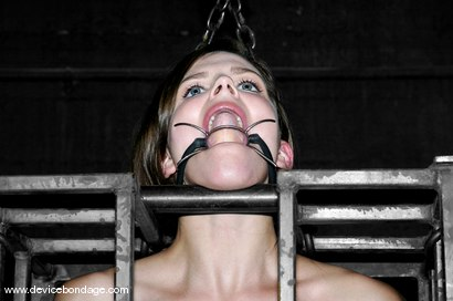 Photo number 5 from Static shot for Device Bondage on Kink.com. Featuring Bobbi Starr in hardcore BDSM & Fetish porn.
