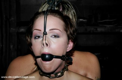 Photo number 6 from Duo shot for Device Bondage on Kink.com. Featuring Delilah Strong and Sara Faye in hardcore BDSM & Fetish porn.