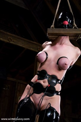 Photo number 3 from Cherry Torn gets her pussy Wired!! shot for Wired Pussy on Kink.com. Featuring Sandra Romain and Cherry Torn in hardcore BDSM & Fetish porn.