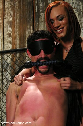 Photo number 3 from Mia Isabella and Eddy shot for TS Seduction on Kink.com. Featuring Mia Isabella and Eddy in hardcore BDSM & Fetish porn.
