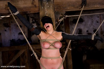 Photo number 13 from Amateur gets her big tits tied and shocked for the FIRST TIME ever! shot for Wired Pussy on Kink.com. Featuring Sandra Romain and Saffron in hardcore BDSM & Fetish porn.