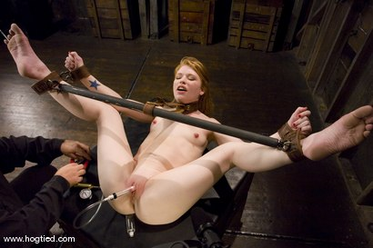 Photo number 4 from Madison Young is one of the toughest <br>bondage models on the planet. shot for Hogtied on Kink.com. Featuring Madison Young in hardcore BDSM & Fetish porn.