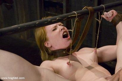 Photo number 6 from Madison Young is one of the toughest <br>bondage models on the planet. shot for Hogtied on Kink.com. Featuring Madison Young in hardcore BDSM & Fetish porn.