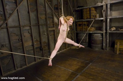 Photo number 9 from Madison Young is one of the toughest <br>bondage models on the planet. shot for Hogtied on Kink.com. Featuring Madison Young in hardcore BDSM & Fetish porn.