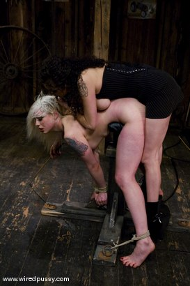Photo number 14 from LIVE SHOW PART 2 shot for Wired Pussy on Kink.com. Featuring Lorelei Lee and Sara Scott in hardcore BDSM & Fetish porn.