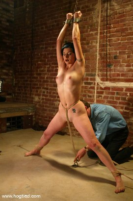 Photo number 2 from Carly shot for Hogtied on Kink.com. Featuring Carly in hardcore BDSM & Fetish porn.