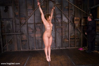 Photo number 10 from DragonLily is back and is doing a realtime Hogtied shoot.<br>No breaks, no rest, no cuts. shot for Hogtied on Kink.com. Featuring DragonLily in hardcore BDSM & Fetish porn.