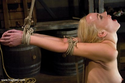 Photo number 2 from  Amazonian Goddess<br>Annette Schwarz, 6'0, blond, bound, helpless, ass fucked and made to cum. shot for Hogtied on Kink.com. Featuring Annette Schwarz in hardcore BDSM & Fetish porn.