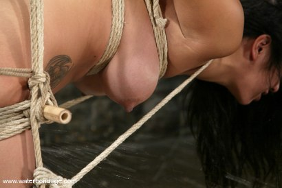 Photo number 9 from Getting   Gianna Lynn   WET! shot for Water Bondage on Kink.com. Featuring Gianna Lynn in hardcore BDSM & Fetish porn.