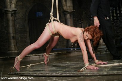Photo number 5 from Sara Faye shot for Water Bondage on Kink.com. Featuring Sara Faye in hardcore BDSM & Fetish porn.