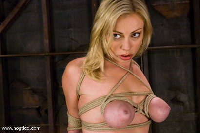 Photo number 4 from Seven is back for breast bondage, crotch rope hell,   and eye rolling massive orgasms. shot for Hogtied on Kink.com. Featuring Sgt. Major and Adrianna Nicole in hardcore BDSM & Fetish porn.