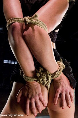 Photo number 3 from Seven is back for breast bondage, crotch rope hell, <br> and eye rolling massive orgasms. shot for Hogtied on Kink.com. Featuring Sgt. Major and Adrianna Nicole in hardcore BDSM & Fetish porn.