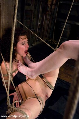 Photo number 12 from Princess Donna subs again!!! shot for Wired Pussy on Kink.com. Featuring Princess Donna Dolore and Claire Adams in hardcore BDSM & Fetish porn.