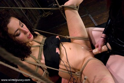 Photo number 14 from Princess Donna subs again!!! shot for Wired Pussy on Kink.com. Featuring Princess Donna Dolore and Claire Adams in hardcore BDSM & Fetish porn.