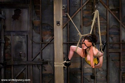 Photo number 4 from Princess Donna subs again!!! shot for Wired Pussy on Kink.com. Featuring Princess Donna Dolore and Claire Adams in hardcore BDSM & Fetish porn.