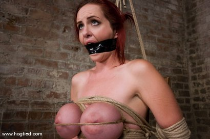 Photo number 5 from Berlin and her huge monsterous, massive<br> breasts are back for hard bondage at its best. shot for Hogtied on Kink.com. Featuring Mz Berlin in hardcore BDSM & Fetish porn.