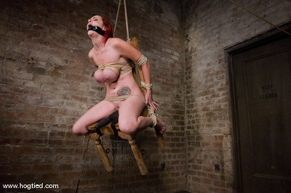 Photo number 6 from Berlin and her huge monsterous, massive<br> breasts are back for hard bondage at its best. shot for Hogtied on Kink.com. Featuring Mz Berlin in hardcore BDSM & Fetish porn.