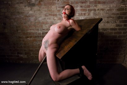 Photo number 9 from Berlin and her huge monsterous, massive<br> breasts are back for hard bondage at its best. shot for Hogtied on Kink.com. Featuring Mz Berlin in hardcore BDSM & Fetish porn.