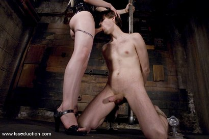 Photo number 12 from La Cherry Spice and Dirk Baywolf shot for TS Seduction on Kink.com. Featuring La Cherry Spice and Dirk Baywolf in hardcore BDSM & Fetish porn.