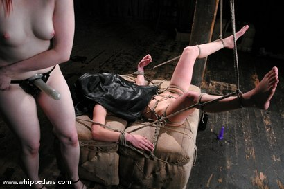Photo number 14 from Poor little 80's Chick shot for Whipped Ass on Kink.com. Featuring Claire Adams and Calico in hardcore BDSM & Fetish porn.