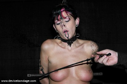 Photo number 7 from Stock shot for Device Bondage on Kink.com. Featuring Kayden Faye in hardcore BDSM & Fetish porn.