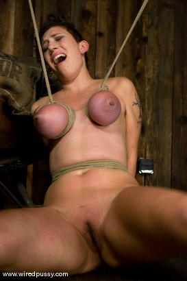 Photo number 4 from Big tits Bound and shocked shot for wiredpussy on Kink.com. Featuring Saffron in hardcore BDSM & Fetish porn.