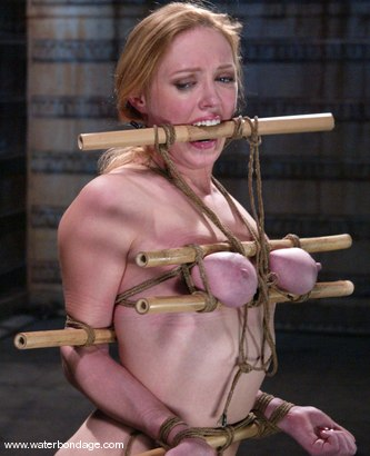 Photo number 5 from What a Darling! shot for Water Bondage on Kink.com. Featuring Dee Williams in hardcore BDSM & Fetish porn.