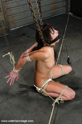 Photo number 4 from Gina Caruso shot for Water Bondage on Kink.com. Featuring Gina Caruso in hardcore BDSM & Fetish porn.
