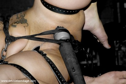 Photo number 14 from Dragon Roll shot for Device Bondage on Kink.com. Featuring DragonLily in hardcore BDSM & Fetish porn.