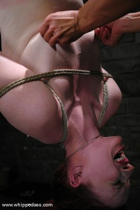 Photo number 8 from Claire Adams Submits shot for Whipped Ass on Kink.com. Featuring Claire Adams and Sandra Romain in hardcore BDSM & Fetish porn.