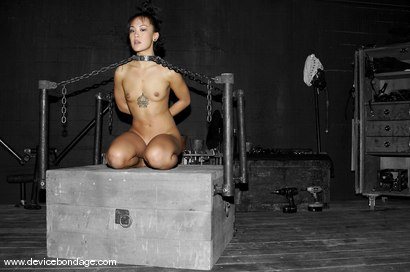 Photo number 8 from Zipper shot for Device Bondage on Kink.com. Featuring Jandi Lin in hardcore BDSM & Fetish porn.