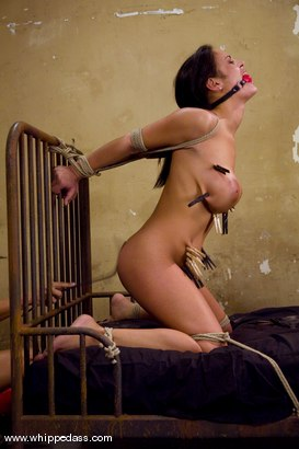 Photo number 12 from Angelina Valentine shot for Whipped Ass on Kink.com. Featuring Sandra Romain and Angelina Valentine in hardcore BDSM & Fetish porn.