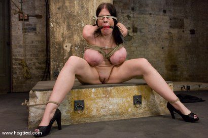 Photo number 5 from Welcom back Daphne Rosen and<br>her huge 34G breasts. Tits worth tying up! shot for Hogtied on Kink.com. Featuring Daphne Rosen in hardcore BDSM & Fetish porn.