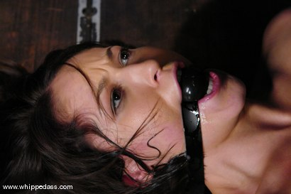 Photo number 7 from Ryan Keely shot for Whipped Ass on Kink.com. Featuring Sandra Romain and Ryan Keely in hardcore BDSM & Fetish porn.