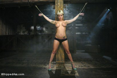 Photo number 1 from Bunnie shot for Whipped Ass on Kink.com. Featuring Sandra Romain and Bunnie in hardcore BDSM & Fetish porn.