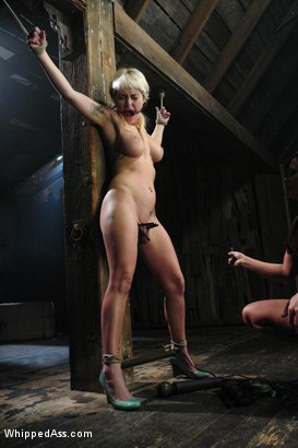 Photo number 3 from Bunnie shot for Whipped Ass on Kink.com. Featuring Sandra Romain and Bunnie in hardcore BDSM & Fetish porn.