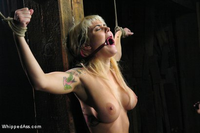 Photo number 2 from Bunnie shot for Whipped Ass on Kink.com. Featuring Sandra Romain and Bunnie in hardcore BDSM & Fetish porn.