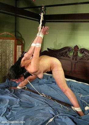 Photo number 12 from rose shot for Hogtied on Kink.com. Featuring rose in hardcore BDSM & Fetish porn.