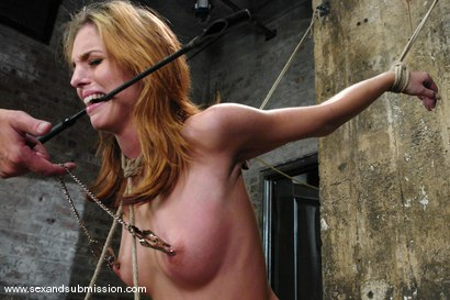 Photo number 5 from Shy Girl shot for Sex And Submission on Kink.com. Featuring Steve Holmes and Riley Shy in hardcore BDSM & Fetish porn.