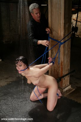 Photo number 7 from Dana DeArmond shot for Water Bondage on Kink.com. Featuring Dana DeArmond in hardcore BDSM & Fetish porn.