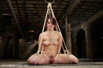 Photo number 8 from Dana DeArmond shot for Water Bondage on Kink.com. Featuring Dana DeArmond in hardcore BDSM & Fetish porn.