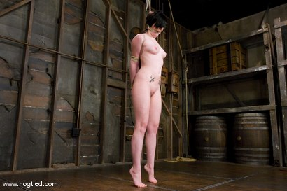 Photo number 3 from Andy San Dimas in her first of many Hogtied vistis.<br>Tickled, gagged, suspended, made to cum. shot for Hogtied on Kink.com. Featuring Andy San Dimas in hardcore BDSM & Fetish porn.