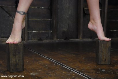 Photo number 8 from This 25 year old from Texas is a member of the site.  We love new and untouched amateur girls! shot for Hogtied on Kink.com. Featuring Lorelei Lane in hardcore BDSM & Fetish porn.
