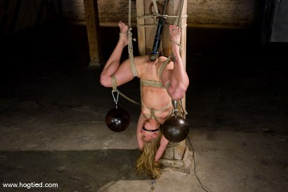 Photo number 9 from Kylie Wilde returns to Hogtied <br>It's 4 years later, and she's hotter than ever. shot for Hogtied on Kink.com. Featuring Kylie Wilde in hardcore BDSM & Fetish porn.