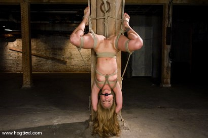 Photo number 7 from Kylie Wilde returns to Hogtied <br>It's 4 years later, and she's hotter than ever. shot for Hogtied on Kink.com. Featuring Kylie Wilde in hardcore BDSM & Fetish porn.